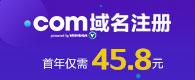 .com域名